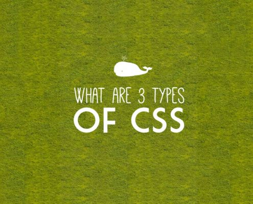 What are 3 types of CSS